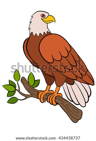 Cartoon Birds For Kids: Eagle. Cute Bald Eagle Sits On The Tree Branch And