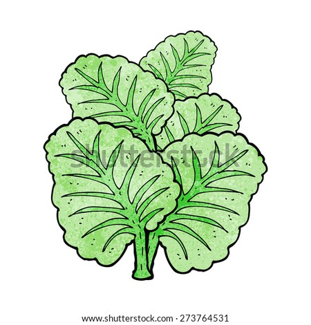 cartoon cabbage leaves - stock vector