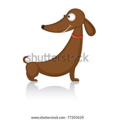 Cartoon funny dog breed dachshund.  Illustration on white background - stock vector