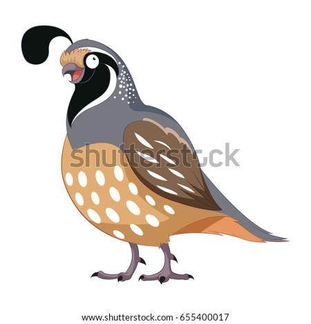 Cartoon Happy Quail Stock Vector 655400017 - Shutterstock