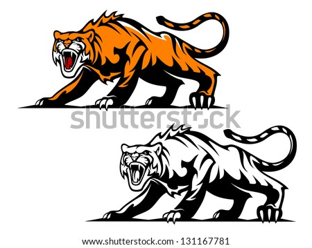 Cartoon illustration of a fierce snarling wild cat crouched low on its haunches with its hackles raised, two colour variants. Jpeg (bitmap) version also available in gallery - stock vector