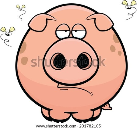 Cartoon illustration of a pig with a grumpy expression.  - stock vector