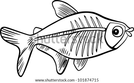 X-ray Tetra Drawings Cartoon Illustration of x Ray