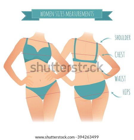 cartoon illustration woman front and back for measurement of parameters body. vector Women sizes measurements for your design - stock vector