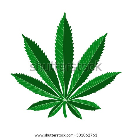 cartoon marijuana leaf - stock vector