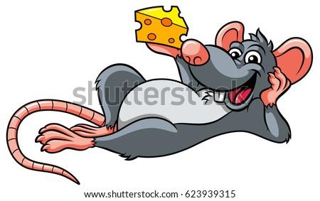 Grey Rat Stock Images,...