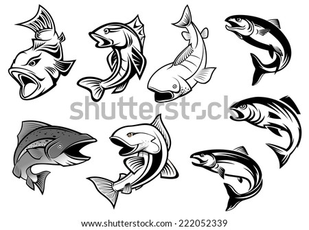 Cartoon salmons fish set for fishing sports or seafood design  - stock vector