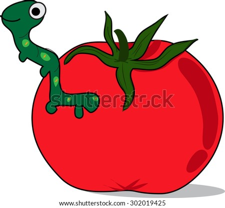 cartoon tomato with worm, white background - stock vector