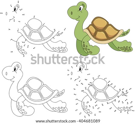essay on turtle