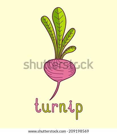 Cartoon vector Illustration of turnip - stock vector