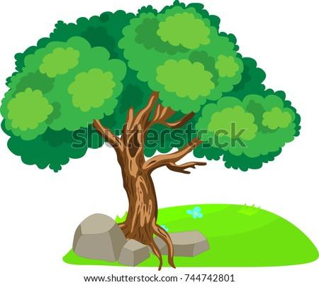 cartoon vector oak tree stones isolated stock vector 744742801 rh shutterstock com oak tree cartoon images Animated Oak Tree