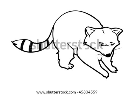 cartoon vector outline illustration raccoon