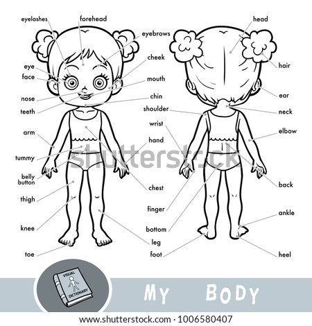 Cartoon Visual Dictionary Children About Human Stock Vector (Royalty ...