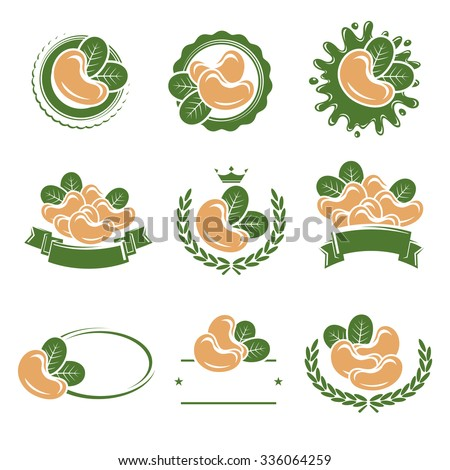 Cashew nuts labels and elements set. Vector - stock vector