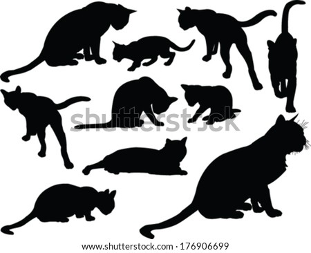 cat collection - vector - stock vector
