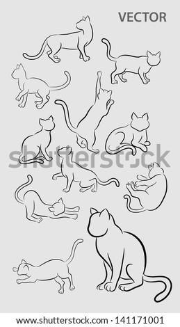 Cat Gesture Sketches Drawing Style Of Movement Sitting Jumping Standing