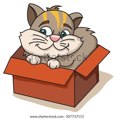 cat in a box - stock vector