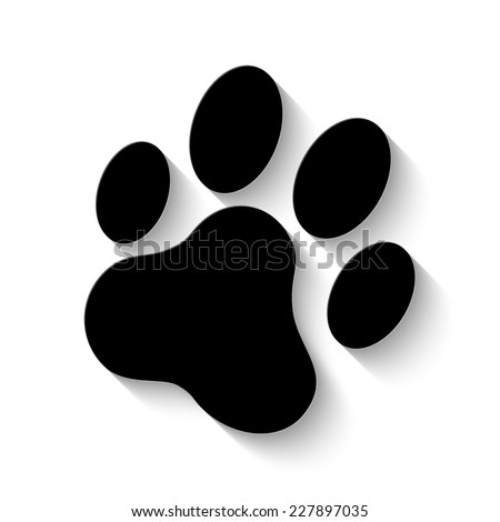cat paw print icon - vector illustration with shadow - stock vector