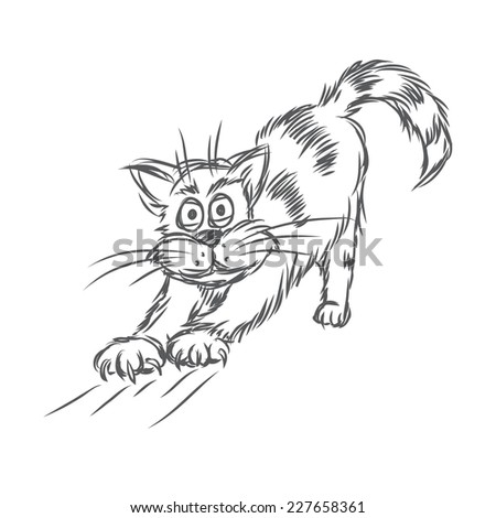 Cat stretching. Vector sketch. - stock vector