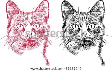 Cat - symbol of horoscope 2011 - stock vector