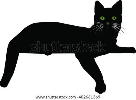 cat vector - stock vector