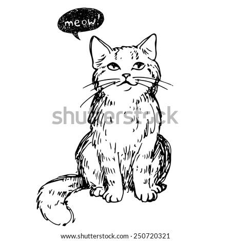 Cat, vector illustration, hand-drawn cute fluffy cat. - stock vector