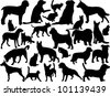 cats and dogs silhouette - vector - stock photo