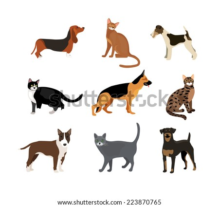 Cats and dogs vector illustration showing different breeds including a rottweiler  fox terrier  bloodhound   german shepherd and pitbull and different fur color in the cats - stock vector