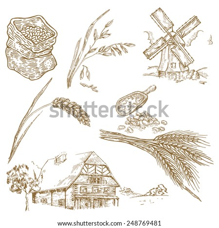 Cereals set. Hand drawn illustration windmill, wheat, farm house in vintage style - stock vector
