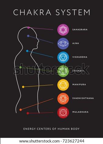 Chakra system human body chart seven stock vector royalty free chakra system of human body chart seven chakra symbols location information of each chakra ccuart Images