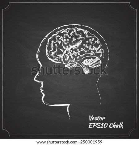 chalk painted brain vector illustration - stock vector