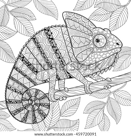 Adult Antistress Coloring Page Black And White Hand Drawn Doodle