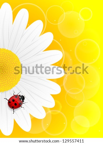 Chamomile flower and ladybird on yellow background. Vector illustration. - stock vector