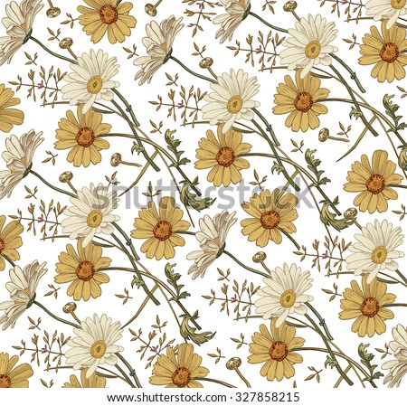 Chamomile. Grass. Wildflowers. Drawing, engraving. Freehand drawing. Beautiful vintage background with blooming flowers. Flora. Herb. Pharmacy. Vector stock Illustration. - stock vector