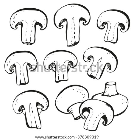 Champignon mushrooms set isolated on white background - stock vector