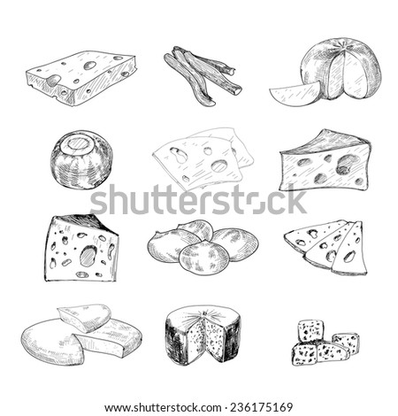 Cheese collection. Set of hand drawn graphic illustration - stock vector