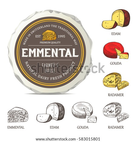 Cheese sticker design on mockup wrapper vector label with outline curd set hand drawn
