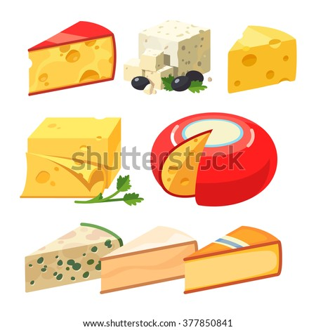 Cheese types. Modern flat style realistic vector illustration icons isolated on white background.