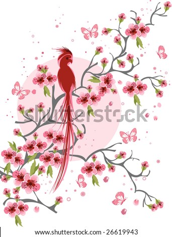 Cherry blossom and bird background