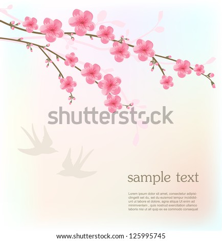 Cherry blossom card - stock vector