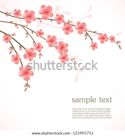 Cherry blossom card - stock vector