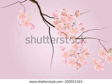 Cherry blossom flowers with branch pink color watercolor look created with art brush ,vector illustration for background  or card - stock vector