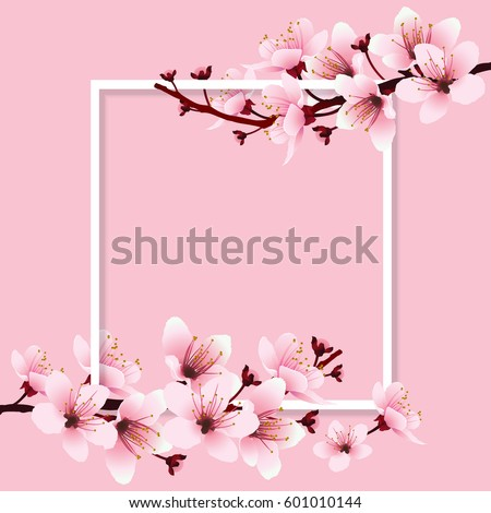 Cherry blossom sakura branch pink flowers stock vektr 601010144 cherry blossom sakura branch with pink flowers on white frame and sweet pink background mightylinksfo