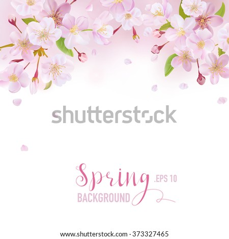 Cherry Blossom Spring Background - with place for your Text - in vector - stock vector