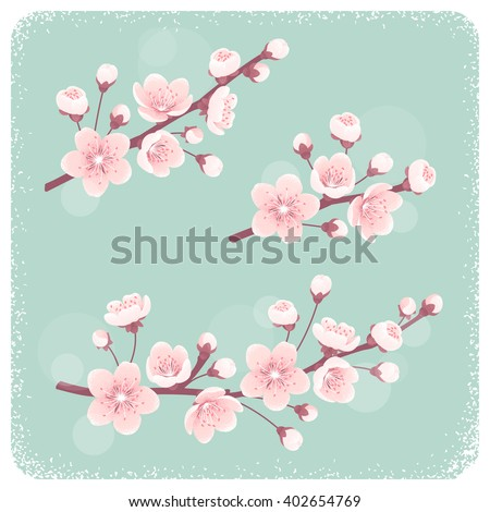 Cherry blossom, spring branches set. Retro vector illustration. Design elements for invitation, banner, card, poster, flyer