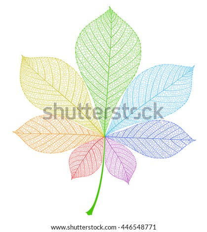 Chestnut leaf isolated. Multicolored rainbow abstract illustration. Beautiful pure vector. - stock vector