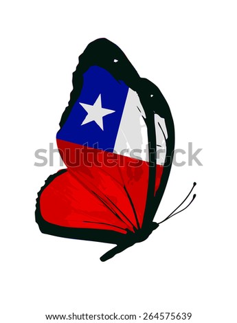 Chile flag butterfly - vector