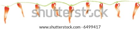 Chile Pepper Lights - stock vector