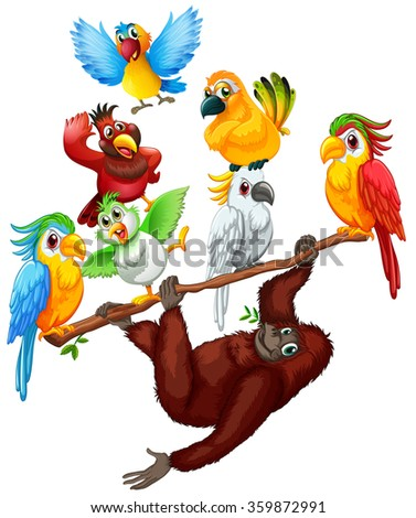 Chimpanzee and many birds on the branch illustration