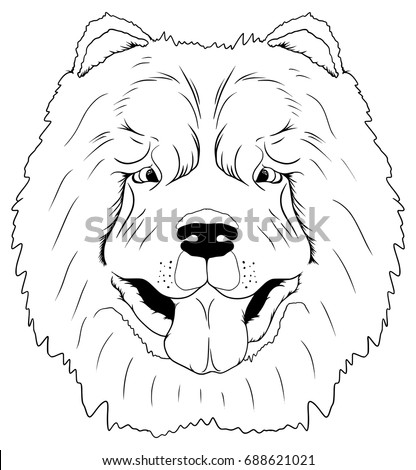 Chinese Dog Coloring Book Chow Isolated On White Background Is A Symbol